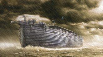方舟から降りた人たち